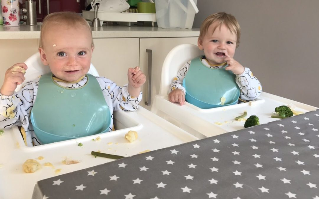 Oilcloth – Grey Stars Review